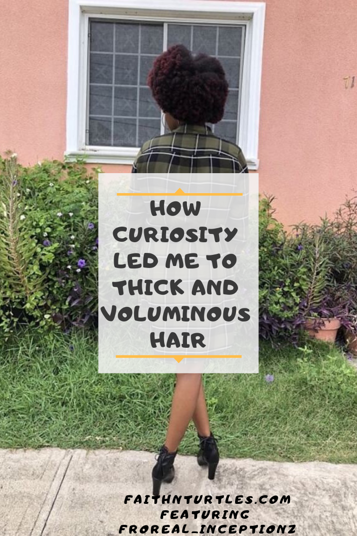 How Curiosity led me to Thick and Voluminous Natural Hair. Featuring Froreal Chammy